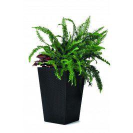 Rojaplast Květináč Rattan planter S