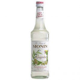 Monin (sirupy, likéry) Monin Ginger - Zázvor 1l