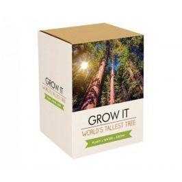 Grow it - Nejvyšší strom na světě: Sekvoj