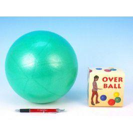 Overball Míč rehabilitační 26cm v krabici