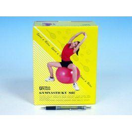 Gymnastický míč relaxační 65cm v krabici červená