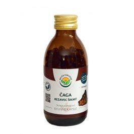 Salvia Paradise Čaga - Rezavec šikmý kapsle 120 ks