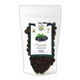 Salvia Paradise Černý rybíz mrazem sušený 40 g