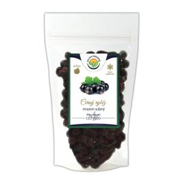 Salvia Paradise Černý rybíz mrazem sušený 350 g
