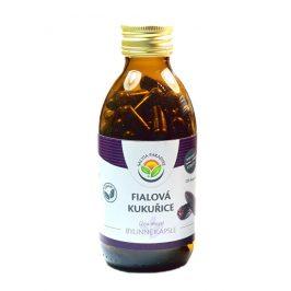 Salvia Paradise Fialová kukuřice - Maiz morado kapsle 60 ks