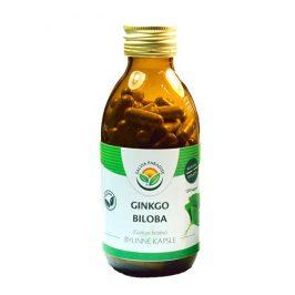 Salvia Paradise Ginkgo biloba - Jinan kapsle 60 ks