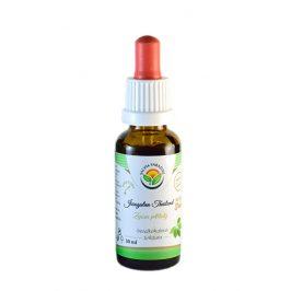 Salvia Paradise Ženšen pětilistý - Jiaogulan AF tinktura 30 ml