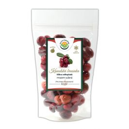 Salvia Paradise Kanadská brusinka mrazem sušená 120 g