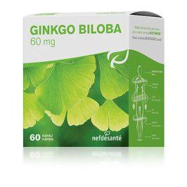 Nef de Santé Ginkgo Biloba 60 kapslí