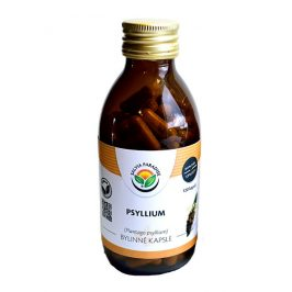 Salvia Paradise Psyllium kapsle 120 ks