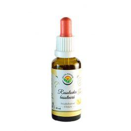 Salvia Paradise Rosolovka řasotvará AF tinktura 50 ml