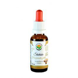 Salvia Paradise Shiitake - Houževnatec AF tinktura 50 ml