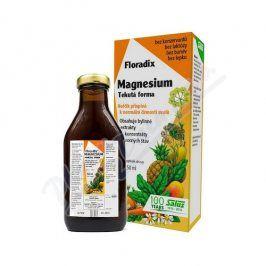 SALUS HAUS SALUS Floradix Magnesium 250ml
