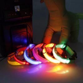 Reedog USB svíticí obojek pro psy a kočky NEW