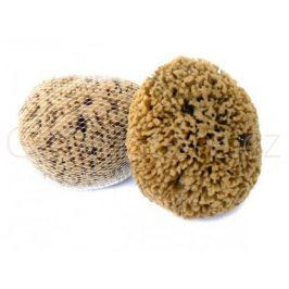 Mořská houba Mineral 13-14cm Caribbean Sun