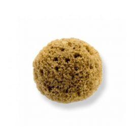 Mořská houba z Karibiku Mineral 13-14cm Bellini