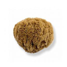 Mořská houba z Karibiku Mineral 14-15cm Bellini