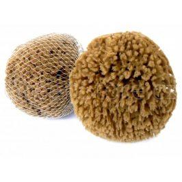 Mořská houba Mineral 15-16cm Caribbean Sun