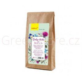 Bylinný čaj Ginkgo biloba 50g Wolfberry